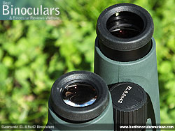 Eyecups on the Swarovski EL 8.5x42 Binoculars