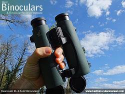 Rear of the Swarovski EL 8.5x42 Binoculars