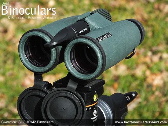 Tripod Adaptable Swarovski SLC 10x42  Binoculars