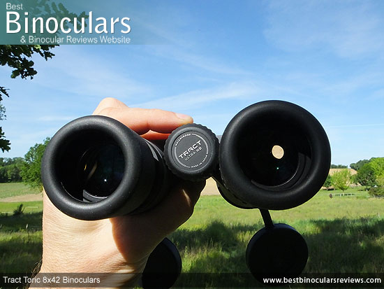 Adjusting the Focus Wheel on the Tract Toric 8x42 Binoculars
