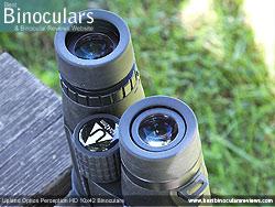 Eyecups on the Upland Optics Perception HD 10x42 Binoculars