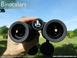 Focusing the Upland Optics Perception HD 10x42 Binoculars