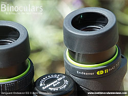 Eyecups on the Vanguard Endeavor ED II Binoculars