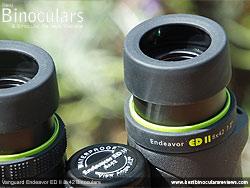 Eyecups on the Vanguard Endeavor ED II Binoculars