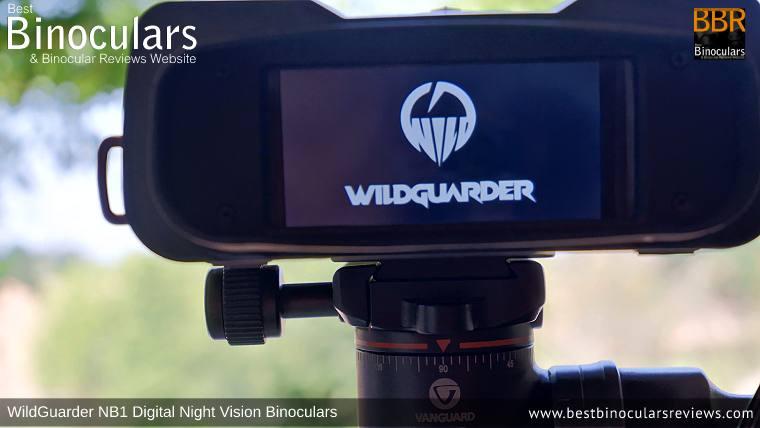 LCD screen on the Steiner Wildlife 10x26 vs WildGuarder NB1 Digital Night Vision Binoculars