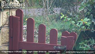 Sample Photo taken with the Wildgameplus WG500B Digital Night Vision Binoculars
