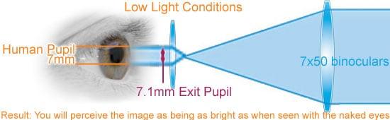 Exit Pupil 7x50 Binoculars