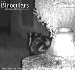 Photo Taken with the Night Owl Optics iGen 20/20 Night Vision Viewer