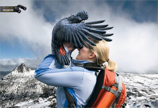 Olympus Binocular Cockatoo Advert