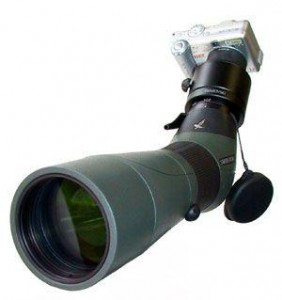 Swarovski Digiscoping