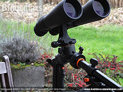 Using the multi angle central column to tilt the tripod upwards towards the birds or starss