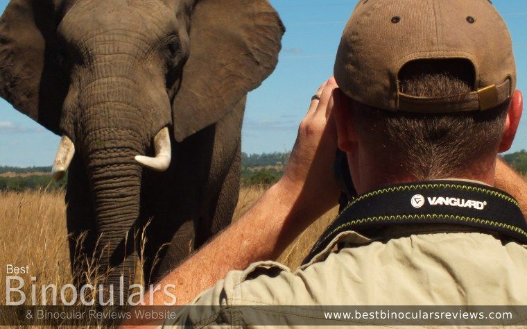 Best Binocular Reviews on Safari